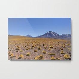 Atacama views Metal Print