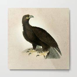The Vintage Falcon Metal Print