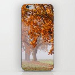 Oaks in the misty Autumn morning (Golden Polish Autumn) iPhone Skin