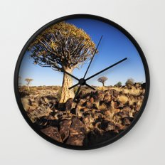 Quiver Trees in Namibia Wall Clock