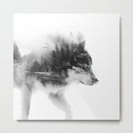 Wolf Stalking Metal Print