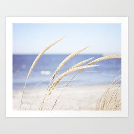 Beach Grass Blue Photography, Coastal Ocean Landscape, Sea Seashore Seascape Shore Art Print