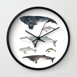 Whales and Dolphins I Wall Clock