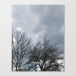 Winter Sky, Cloudy Winter Sky, Beautiful Clouds and Trees Canvas Print