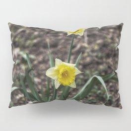 Spring Daffodil Pillow Sham