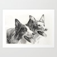 border collie Art Prints featuring Border Collie by Ruben Pino