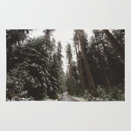 Redwood Forest Adventure II - Nature Photography Rug
