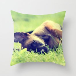 Bedtime for the small puppies Throw Pillow