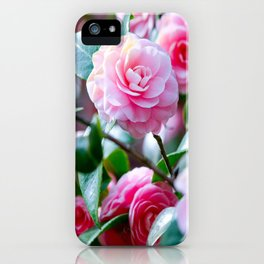 Pink Camelias iPhone Case