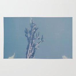 Catalina Cactus Rug