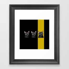 Three Black Cats with Black and Yellow Background Framed Art Print