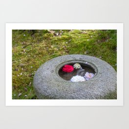Japanese Garden, Stone Bowl with Floating Flowers Art Print