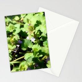 Ground Ivy 07 Stationery Cards