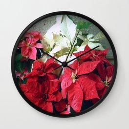 Mixed color Poinsettias 3 Wall Clock