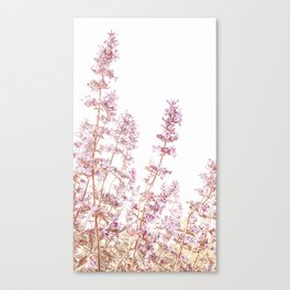 Soft Pink Wild Summer Flowers Canvas Print
