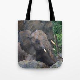 Elephants Eye Tote Bag