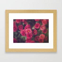 Floral Dreams Framed Art Print