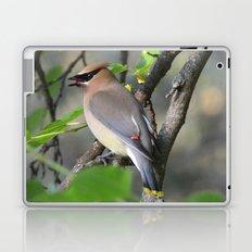 Cedar Waxwing Laptop & iPad Skin