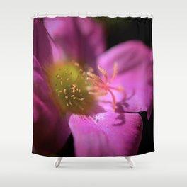 Portulaca Shower Curtain