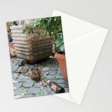 Drunken Kitty Stationery Cards