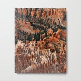 Utahs delight Metal Print