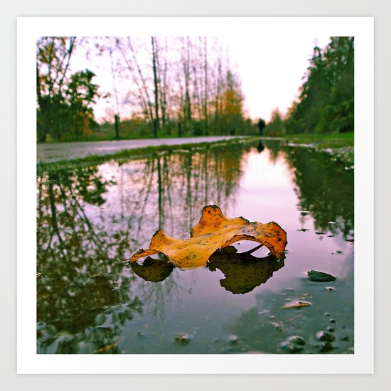 Late Autumn reflection Art Print