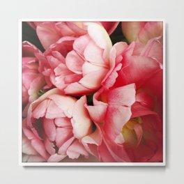 Pink Spring Tulips  (Instagram) Metal Print