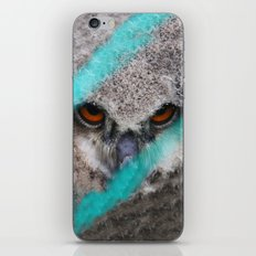 eyes of fire, young bird of prey portrait iPhone Skin