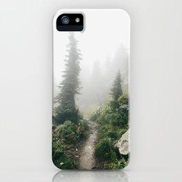 Foggy, Windworn Pines at Glacier National Park iPhone Case