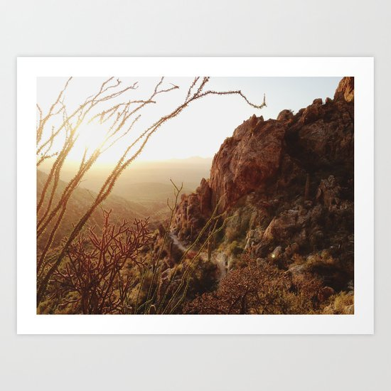 Desert Sunset Trail Art Print