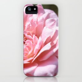 Rose Delight iPhone Case