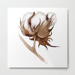 Cotton Flower 03 Metal Print