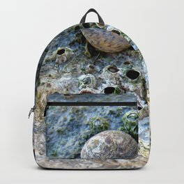 Nacre rock with sea snail Backpack