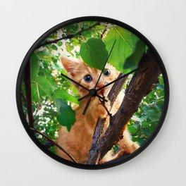 kitten in the tree Wall Clock