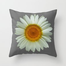 Summer White Daisy on Grey Throw Pillow
