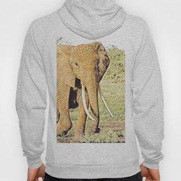 Animal ArtStudio 1619 Elephant Hoody
