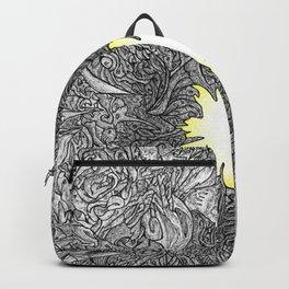 Witnessing Backpack