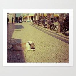 Boris the dog Art Print