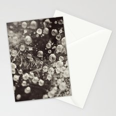 Caught In A Spiders Web Stationery Cards