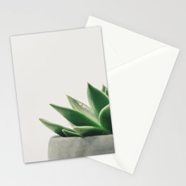 Minimal Cactus - Cacti Photography Stationery Cards