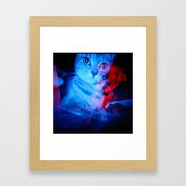 Oblina/Indie 1 Framed Art Print