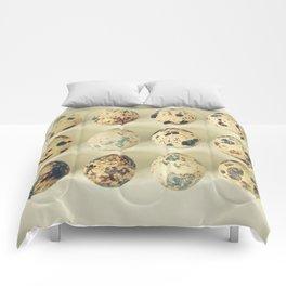 Quail Eggs Comforters