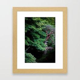Gyoen Gravitas I Framed Art Print