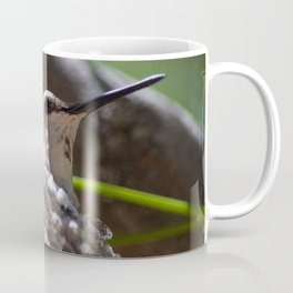 Hummingbird Momma Coffee Mug