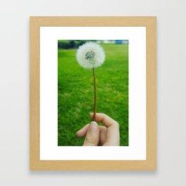 Dandelion Springtime Flower Framed Art Print