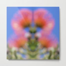 Pincushion Protea Mirage Metal Print