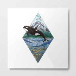 Kiki - Southern Resident Killer Whale Metal Print
