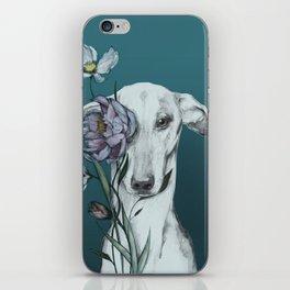 Greyhound Floro blue iPhone Skin