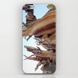 Trees twisting in the wind iPhone Skin