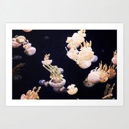 The Jellies Art Print
